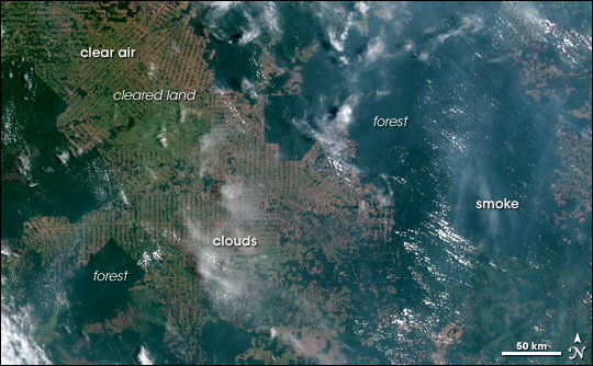 Satellite picture of smoke and clouds covering the Amazon Rainforest