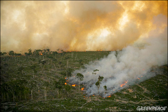Aerial photograph of agricultural fires burning in the Amazon rainforest.