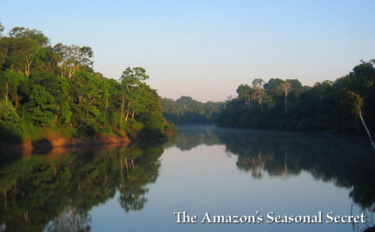 The Amazon's Seasonal Secret