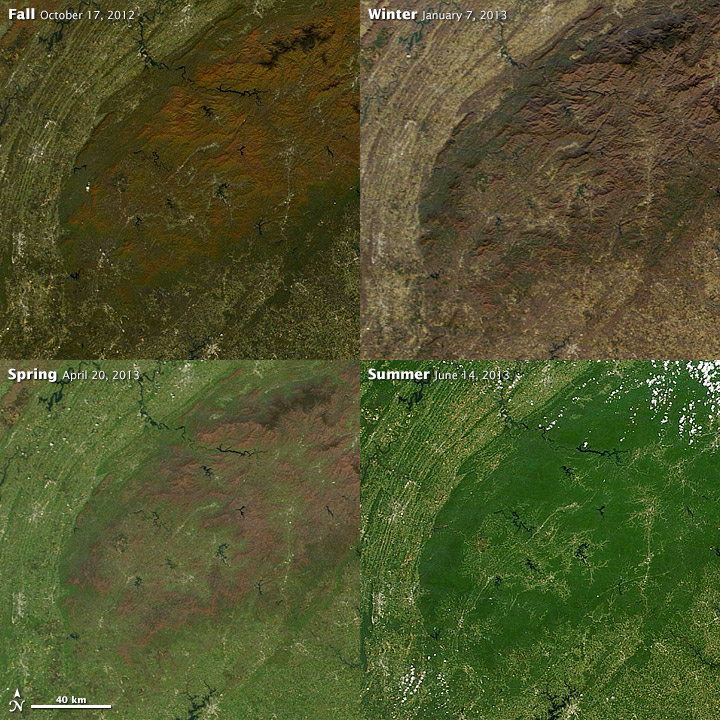 4 satellite images showing seasonal changes in temperate climates.