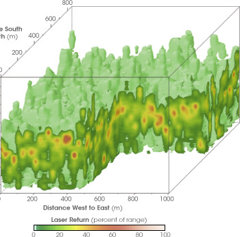 Map of Forest Canopy Density Derived from LIDAR Data