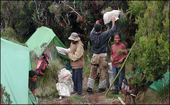 Photograph of Field Camp in Madagascar