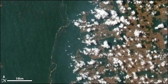 deforestation effects on atmosphere