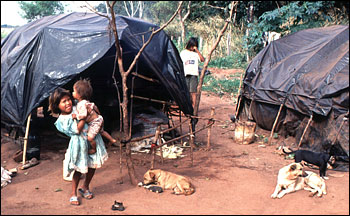 Photograph of displaced aboriginals (Guarani Indians) in Mato Grosso, Brazil