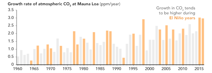 Chart of atmospheric CO2 growth rate at Mauna Loa.