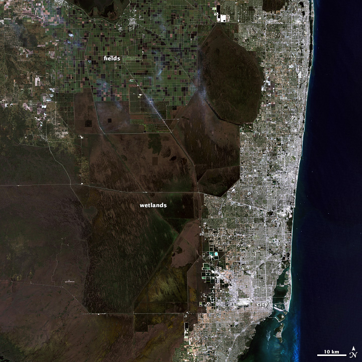 Landsat image of the Florida in red, green, and blue light.