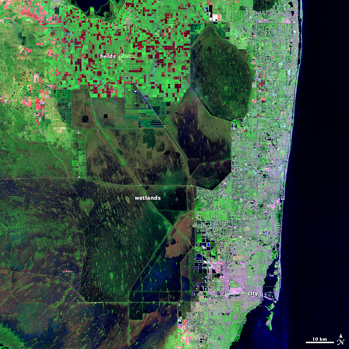 Landsat image of the Florida in shortwave infrared, near infrared, and green light.