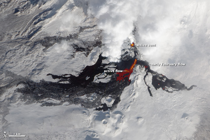 Infrared light reveals details of the evolving lava flows on Russia's Tolbachik Volcano.