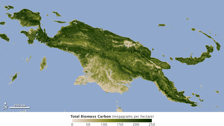 Map of biomass carbon.