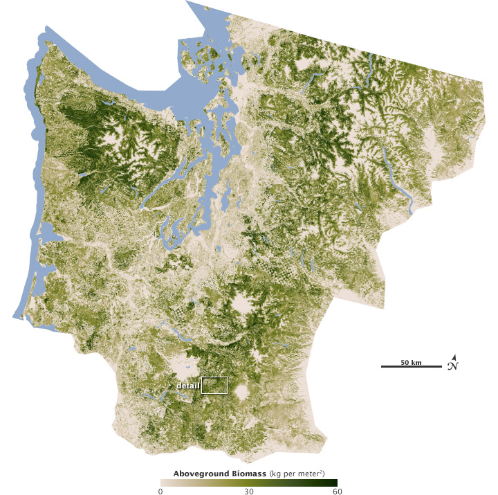Map of biomass in the Pacific Northwest.