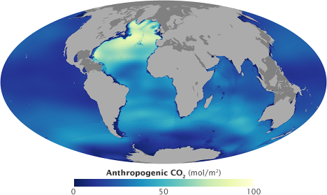 Map of anthropogenic carbon dissolved in the oceans.