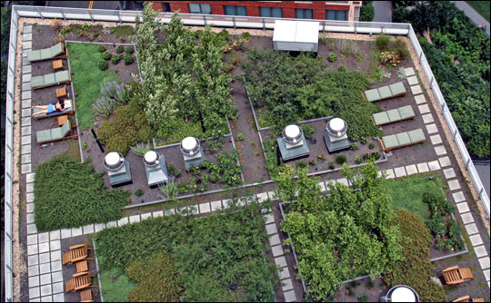 Green roof atop the Solaire, Battery Park City, Copyright birdw0rks/Simon Bird