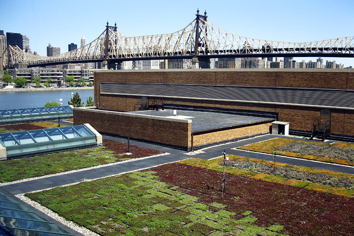 Photograph of the green roof on top of the Con Edison building, Long Island City, New York.
