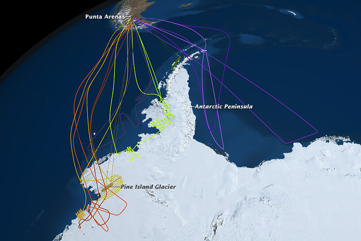 Map of flights over Antarctica from the 2010 Operation IceBridge field campaign.