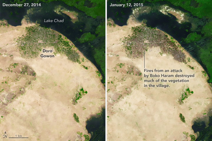 Satellite image of damage caused by Boko Haram.