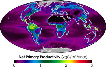 Map of Net Primary Productivity