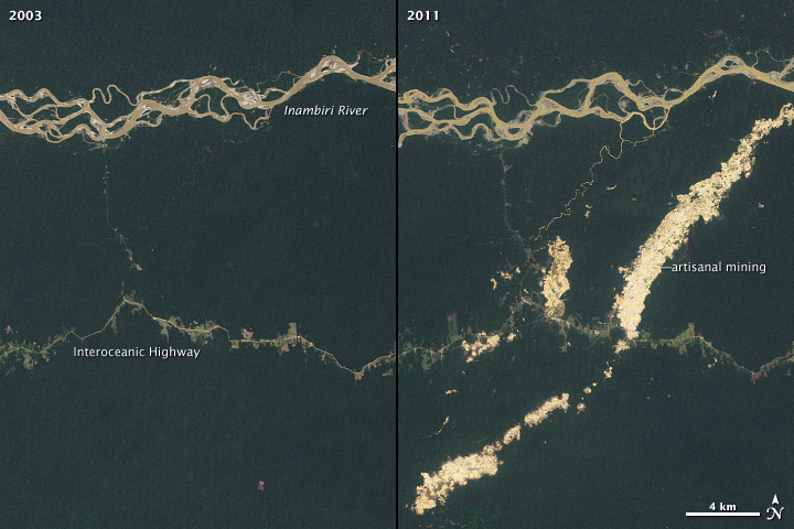 Landsat images showing the growth of gold mining in the Peruvian Amazon.