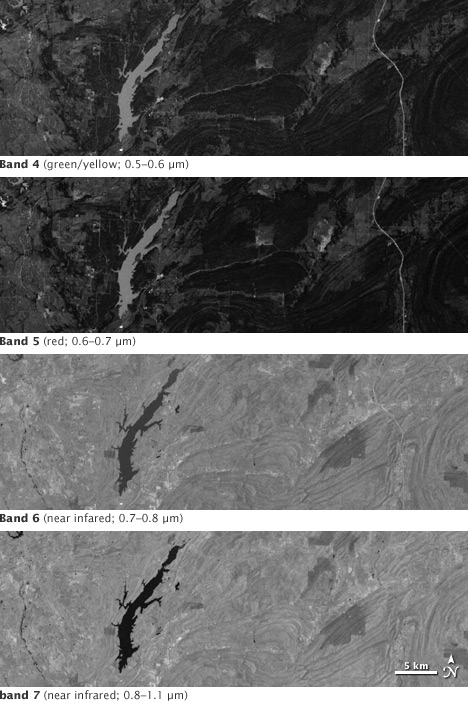The Four Landsat Multi Spectral Scanner Bands.