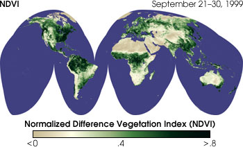 Global Normalized Difference Vegetation Index