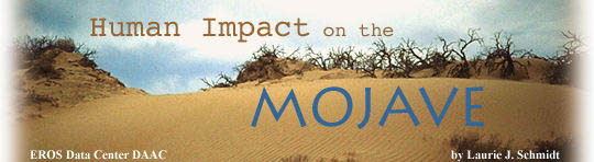 Human Impact on the Mojave by Laurie J. Schmidt
