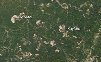 Satellite view of large surface mines in southwestern West Virginia.