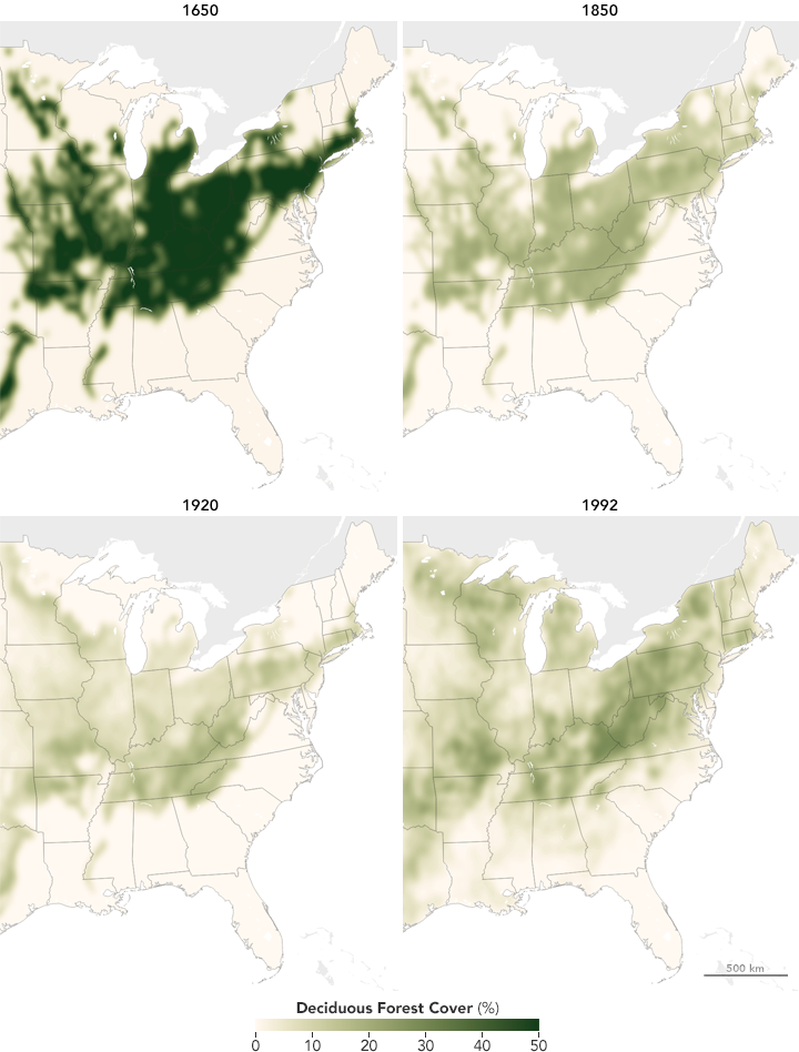 Maps of deciduous forest cover in the contiguous United States, 1650-1992
