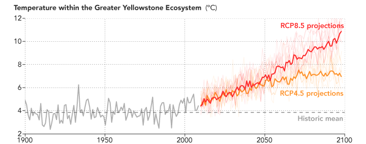 Graph of projected temperatres in the Greater Yellowstone Ecosystem