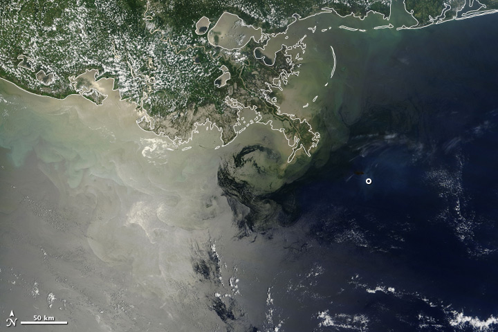 Satellite image showing natural and man-made oil slicks as well as runoff and other discoloration in the Gulf of Mexico.
