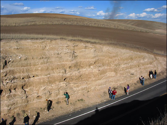 Photograph of students studying loess stratigraphy in a road cut near Palouse, Washington
