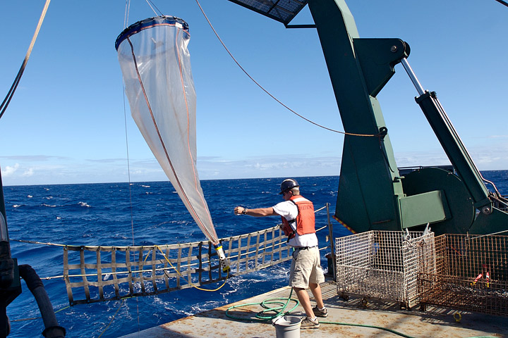 Photograph of a researcher retrieving a plankton net from the ocean.
