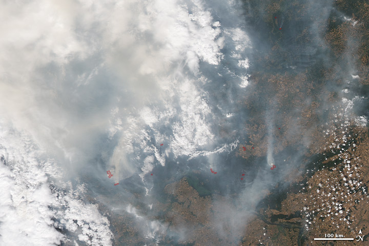 Satellite image of fires and smoke in western Russia, July 30, 2010.