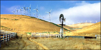 Photograph of Wind Turbines