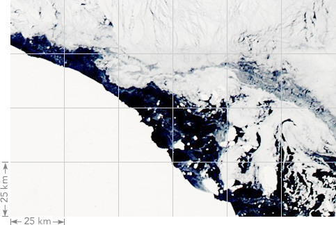 Example of the 25km per pixel coverage of sea ice monitoring satellites.