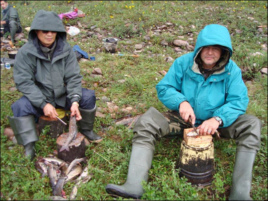 Photograph of Siberian expedition team members gutting fish.