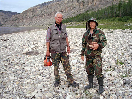 Photograph of Slava Kharuk and Sergei Im holding transects (slices) of larch trees.