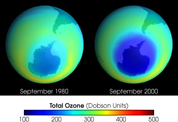 Comparison of 1980 and 2000 ozone levels