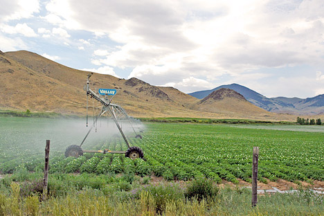 Photograph of irrigation in Idaho.