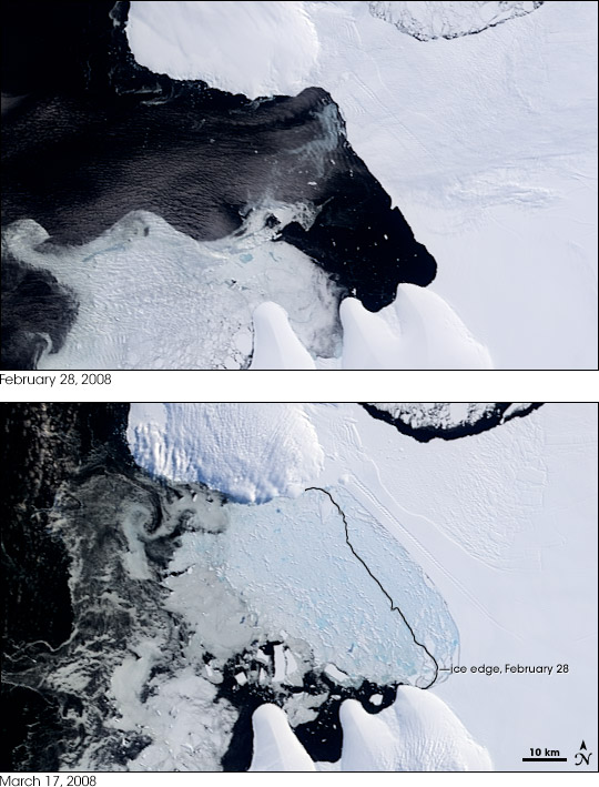 Satellite image overviews of the Wilkins Ice Shelf collapse From February 28 and March 17, 2008.