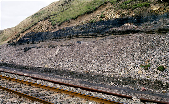 Photograph of exposed coal near Providence Bar, Parton, England.