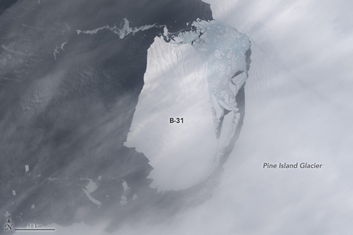 Landsat 8 captured this image on November 13, 2013 of iceberg B-31.