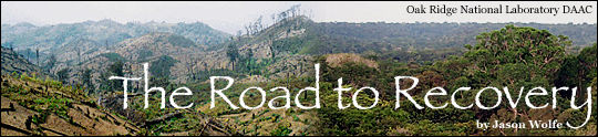 The Road to Recovery by Jason Wolfe