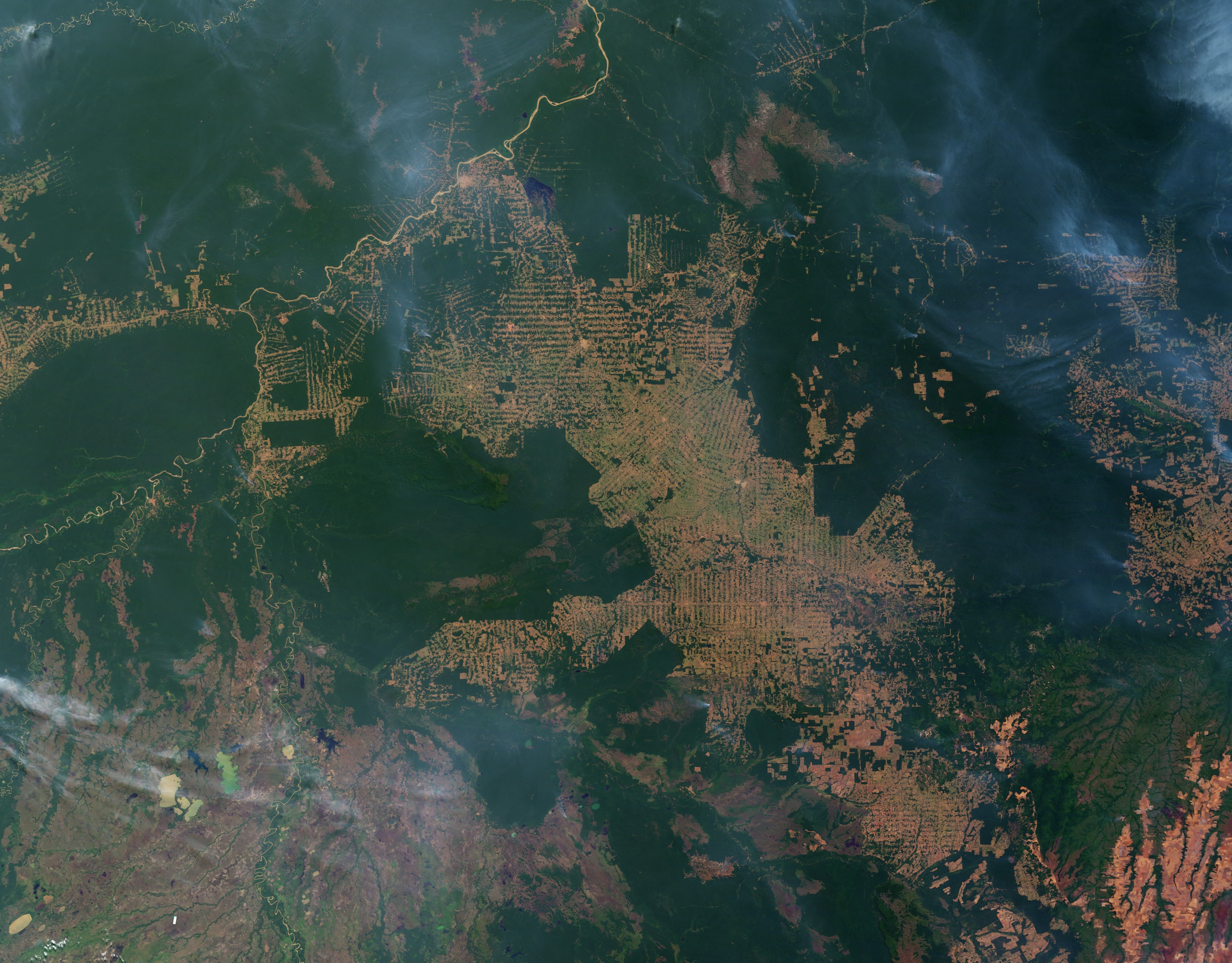 World Of Change Amazon Deforestation