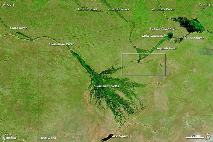 Okavango Delta region