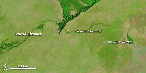 Selinda and Savuti Channels
