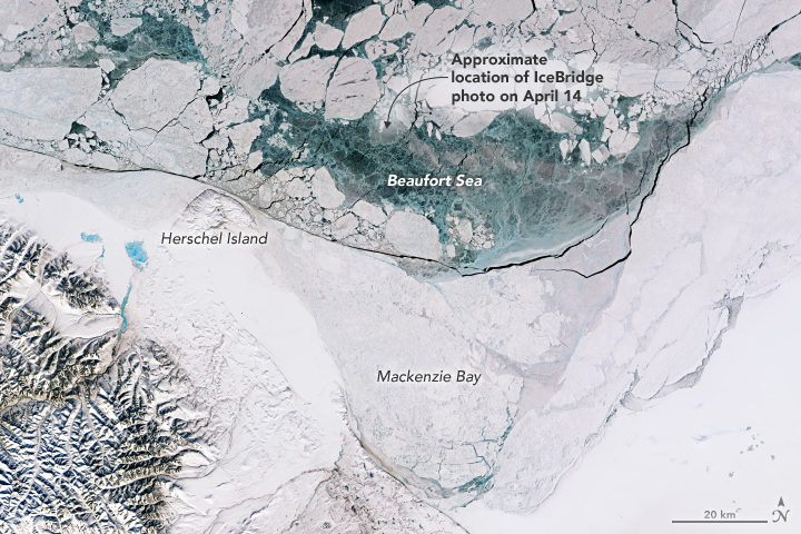 Earth Matters - Spring Has Sprung in the Arctic Ocean