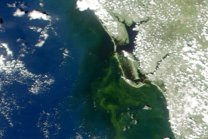Earth Matters How Scientists Are Tracking Floridas Red Tides With