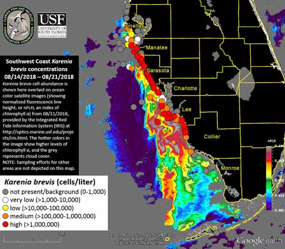 Earth Matters How Scientists Are Tracking Florida S Red