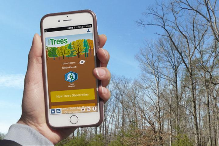 You Better Beleaf it: NASA GLOBE Program to Host 2021 Trees Community Challenge