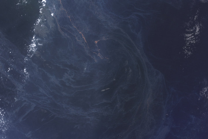 Oil spill in the Gulf of Mexico, May 25, 2010.