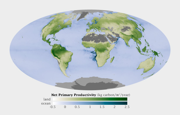Global map of Net Primary Productivity, on land and in the oceans.